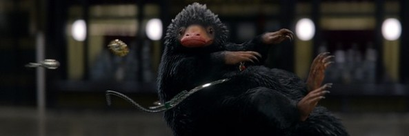 fantastic-beasts-and-where-to-find-them-niffler-slice-600x200
